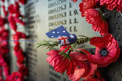 Ode of Remembrance |  (francisling) Tags: wall zeiss 35mm t memorial war sony capital australia cybershot fallen canberra names territory sonnar     rx1      dscrx1