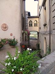 Piante ed arco a Spello. (sangiopanza2000) Tags: travel flowers italy alley italia fiori vicolo viaggio umbria spello sangiopanza