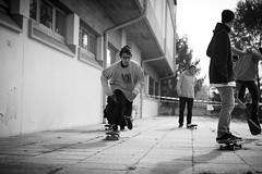 the in-run (Alberto Della Beffa) Tags: life portrait people bw torino moments tour gente skateboarding pigeons contest culture lifestyle spot skate trick turin ritratti skatespot valdofusi sbnk respectskatespot sabink