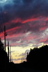 Road at Sunset (Vegan Butterfly) Tags: road pink trees sunset sky silhouette clouds shadows poles dryden