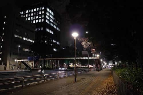 Fushimi-Dori, Shirakawa, Nagoya