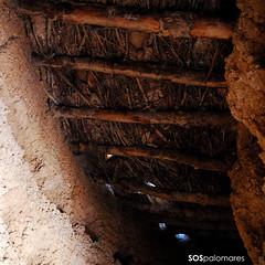 Palomar 45. Villarrn de Campos. 05 (SOSpalomares) Tags: palomar zamora tierradecampos villarrndecampos sospalomares