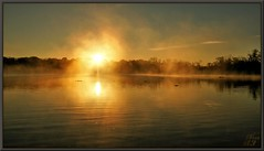 Alien Encounter (WanaM3) Tags: trees light sun mist reflection nature water fog clouds sunrise photography scenery glow texas sony ngc scenic bayou pasadena canoeing paddling naturephotography armandbayounaturecenter armandbayou wanam3
