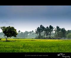 Tiruchirappalli Beautiful Landscapes of Tiruchirappalli
