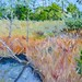 "New Bern Marsh - 16"" x 20"" - sold"
