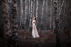 Dream (photomoods) Tags: germany bokeh outdoor natura mario moods mb bolz photomoods mariobolz mbphotograph
