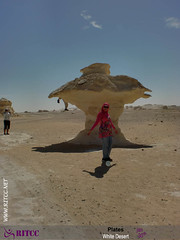 RITCC White Desert-67 (Ritcc.net) Tags: white desert plates ahmed   ragheb       ritcc