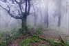 - El sueño sigue su curso y me atropella - (Mar Diaz -korama-) Tags: winter bw naturaleza nature clouds landscape rocks ngc npc nubes cadiz invierno niebla hitech tarifa perspectivas 3000v120f world100f slicesoftime lamanoamiga tamron1024mm nikond7000 filtrobw1000x canonikos elbujeo jesuscmsfavoritesgallery flickrsfinestimages1 flickrsfinestimages2 flickrsfinestimages3 mardiazkorama filtroshitechnd9reverso inspiringcreativeminds
