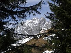 Baumgartneralm (bookhouse boy) Tags: mountains alps going berge alpen tyrol 2014 wilderkaiser regalm bergsteigergrab baumgartenkpfl tannbichl 1mrz2014 baumgartneralm baumgartnerkpfl