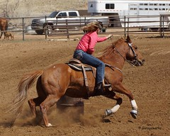 Dewey Barrel Race (Garagewerks) Tags: arizona horse woman sport female race all sony country barrel arena rodeo dewey cowgirl athlete equine 50500mm views50 views100 views200 views300 views250 views150 f4563 slta77v