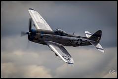 "Republic P-47D Thunderbolt ""Tallahassee Lassie"" (c0yote) Tags: heritage canon republic aircraft aviation wwii airshow sp di jug 70300mm vc warbird everett thunderbolt p47 fhc fav10 p47d painefield f456 kpae flyingheritagecollection flyinghistory tallahasseelassie n7159z tamronsp70300mmf456divcusd n41123 4549406canoneverettfhcflying historyjugkpaen41123n7159zp47p47dpaine fieldrepublictallahassee lassietamron usdthunderboltwwiiair states4549406 collectionflying showaircraftaviationwarbird everettwashingtonunited"