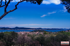 Saint tropez (Christian Picard) Tags: en mer paris france saint st shop french temple photo yahoo google nikon photographie image photos expression images tropez christian le lumiere trop eglise picard naturelle photographe sainttropez 2014 savigny d7100 77176 lexpression myshopphotos