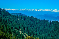 Himalaya (Sougata2013) Tags: india mountain nature landscape himalaya kullu himachalpradesh himalayanrange dhauladharrange jaloripass nikoncoolpixl120 hanumaantibba