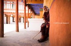 Chemrey Gompa, Ladakh, India (monsieur I) Tags: world travel yak portrait india mountain lake canon landscape monk monastery canonef2470mmf28lusm ladakh pangongtso chemreygompa canoneos5dmark3 monsieuri ivandupont
