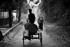 A Tribute To John Denver (N A Y E E M) Tags: rickshawvan road morning light ground policeline dampara street chittagong bangladesh tribute johndenver