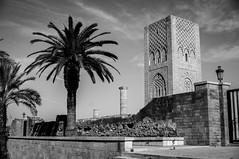 Rabat (gabrielromeroplana) Tags: torre hassan rabat marruecos blancoynegro blanco negro blackwhite black white bw sony nex 3n 1650