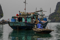 Baie d'Halong ( Philippe L PhotoGraphy ) Tags: cambodge saigonhanoi asiedusudest asie baiehalong vietnam pêcheur baie halong eau barque