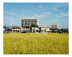 takasaki (Mériol Lehmann) Tags: vscofilm rice landscape gunma fields buildings cityscape houses paddyfields japan topographies takasakishi gunmaken jp