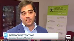 Toño Constantino, especialistas en Marketing para el sector agroalimentario.