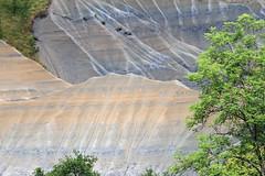 Dans le ravin de Corboeuf (Yvan LEMEUR) Tags: ravindecorboeuf ravin extérieur rosières hauteloire auvergne lepuyenvelay france landscape paysage arbres erosion géologie geology ravinement argile marnes