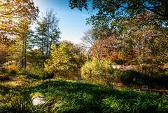 Luisenpark Mannheim (Michele Naro) Tags: mannheim luisenpark badenwürttemberg rheinneckargebiet deutschland d80 nikond80 samyang14mmf28 germany germania