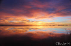 March 4, 2017 - A stunning sunrise on the Colorado plains. (Bobby H)