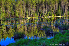 Moose Creek Reservoir (jimgspokane) Tags: moosecreekreservoir idahostate camping forests trees reservoirs lakes