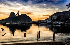 Enseada de Botafogo - Rio de Janeiro (mariohowat) Tags: enseadadebotafogo praiasdoriodejaneiro praiadebotafogo sunrise nascerdosol alvorada natureza riodejaneiro amanhecer brasil brazil canon6d