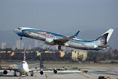 B738sw ASA N559AS A2341 (164hori) Tags: alaskaairlines 737800 b738 n559as lax salmon alaskanwildlifeseafood