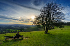 Early spring at Colley Hill (TanzPanorama) Tags: england surrey surreyhills colleyhill sunset sunsetlight tanzpanorama sonya7ii a7ii sonyalpha variotessartfe1635mmf4zaoss fe1635mmf4zaoss sel1635z flickr ng nt vista scenic nature spring reigate sky reigatehill northdowns hill escarpment travel countryside rural