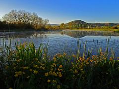 Día de cielo azul y lucir el sol (eitb.eus) Tags: eitbcom 32073 g1 tiemponaturaleza tiempon2017 primavera alava vitoriagasteiz joseantoniofernandezdeluco