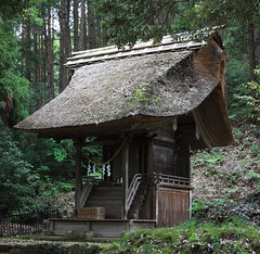 Japanese religious architecture / () (TANAKA Juuyoh ()) Tags: architecture religious japanese design high shrine exterior traditional style hires resolution 5d hi res  tochigi markii               mashikomachi    hagagun  tsunajinja