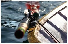 Pre Palio Muggiano (Palio del Golfo - Roberto Besana) Tags: barche laspezia voga legrazie borgate paliodelgofo