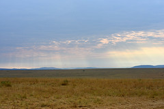 DSC_8443 (H Sinica) Tags: balloon safari hotairballoon masaimara maasaimara