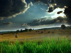 Field-Storm-Wallpaper (1) (vinod_pednekar) Tags: