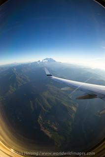 Mt. Rainier