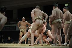 DSC_1641 (kajikaz) Tags: hiroshima sumo