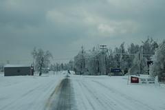 Hwy 641 (Porch Dog) Tags: nikon kentucky icestorm garywhittington january2009 marshallcokentucky
