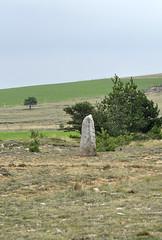 Menhirs_04.JPG_-_©_Philippe_Nicolas