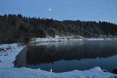 Moon reflection (ArveBerntzen) Tags: travel winter moon lake snow reflection ice norway forest reflections mirror norge frozen is vinter nikon frost norwegen moonrise skog moonlight nordic bluehour tamron trondheim srtrndelag sn norvegia scandinavian sn norvege bltimen norsk jonsvatnet skoge