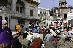 People listening to a musical troupe perfoming in front of Akal Takht (Ashish A) Tags: india building canon buildings religious temple asia religion crowd staircase repair sikh devotee devotees amritsar digitalslr sikhism goldentemple reconstruction musicalinstruments whitebuilding canoncamera religioussymbol musicalperformance peoplesitting sittingpeople akaltakht goldentempleinamritsar canon650d musicaltroupe religioussongs canont4i peoplewearingturbans peopleinsidegoldentemple peoplelisteningtosongs
