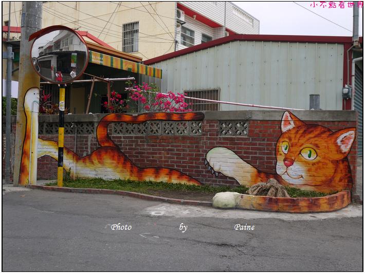 雲林虎尾屋頂上的貓 (9).JPG