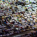 Over 1 million Muslims performing Fajr Prayer