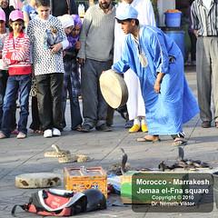 _D3S1573 Marrakesh - Jemaa el-Fna tr (Nmeth Viktor) Tags: viktor square morocco marrakesh jemaa elfna nmeth vilgutaz drnvq