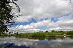 The River Guden (Jim Skovrider) Tags: bw denmark nikon tokina ultrawide polfilter randers guden capturenx atx116prodx d5100 theriverguden nikond5100 1116f28lens cpolmrc