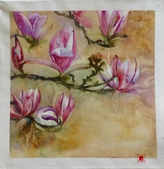 21 16|17 Le printemps arrive... (Plume de soi (e)) Tags: