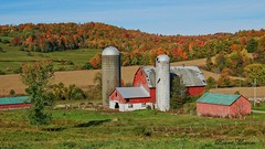 An Autumn Farm (Bob the Birdman and All Around Nature Guy) Tags: autumnfarm robertmiesner bobthebirdman farm fall autumn autumncolors autumnlandscape landscape nature