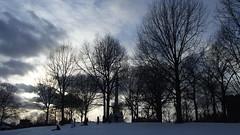 Winter Dusk in Boston Common (marilora) Tags: boston bostoncommon winter snow dusk clouds sky