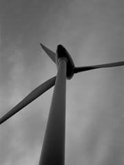 Windmill and Sky (Linhof Kardan Super Color ST, Webphota NP22) (baumbaTz) Tags: blackandwhite bw color film monochrome st analog germany deutschland blackwhite wind atl may super ishootfilm mai 49 epson linhof analogue monochrom grayscale schwarzweiss analogphotography turbine stade 9x12 windturbine windpower greyscale schneider windkraft schneiderkreuznach windmhle niedersachsen lowersaxony filmphotography jobo fpp 150mm v500 adox 9x12cm filmisnotdead autolab 2013 np22 windkraftwerk kardan analoguephotography componon kutenholz webphota filmforever atomal epsonv500 adoxatomal49 atl2200 joboautolabatl2200 linhofkardansupercolorst schneiderkreuznachcomponon150mmf56 webphotanp22 20130524