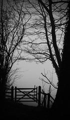 Fog gate (Ken Quantick) Tags: morning england blackandwhite black misty dark landscape gold star sussex flickr award best spooky bestofthebest bestofflickr blueribbon frightening damncool blackonwhite digitalcameraclub cherryontop supershot abigfave anawesomeshot aplusphoto diamondclassphotographer citrit rubyawards flickriver thisphotorocks betterthangood globalworldawards flickrcinated quantick kenquantick